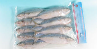 Indian mackerel 90/120 1kg MV - Fish - 8716789010605 - 1